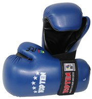 TOPTEN ITF TKD Gloves