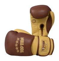 "Boxing gloves TOP TEN ""Heritage"" 12 oz"