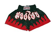 Kickboxing Shorts TOP TEN THAI-SHORTS