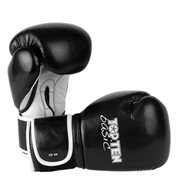 Kickboxing Gloves TOP TEN Basic Gloves 10 Oz